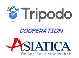 tripodo_logo_260